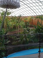 Inside the dome of the astronomers' hotel, it's a greenhouse, pool, and that umbrella-looking thing closes at night so not a photon of light can escape and contaminate the telescopic viewings