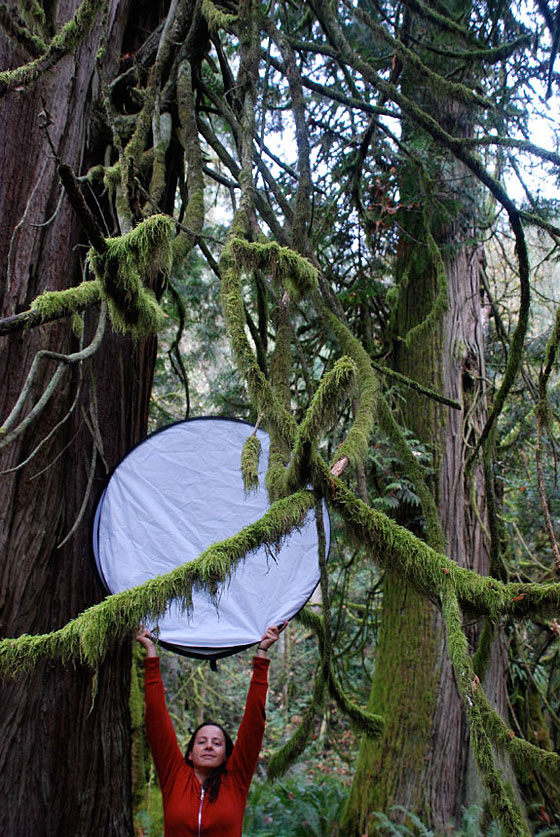 Photographic assistant Crystal Cerny on location in BC's coastal rainforest