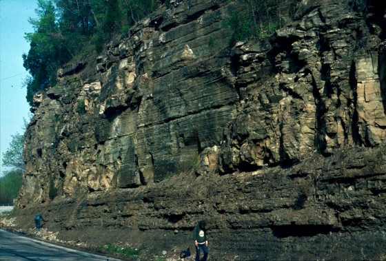 Typical road cut of Ordovician rocks in northern Kentucky, part of sequence of thousands of feet in thickness of limestones and shales deposited in quiet water over millions of years
