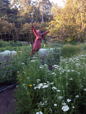 The Esalen garden, with a scare goddess