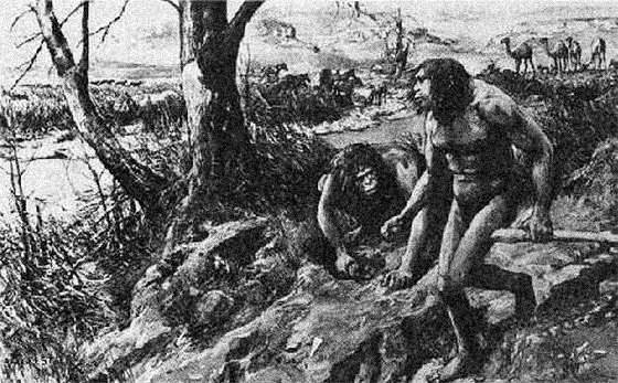 The 'reconstruction' of 'Nebraska man' by the 'Illustrated London News' (actually based on Homo erectus, 'Java man,' not the Nebraska tooth, which no scientist claimed looked like an advanced species of Homo).